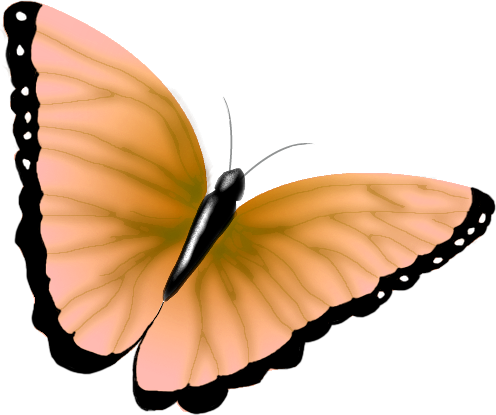clipart_butterfly3